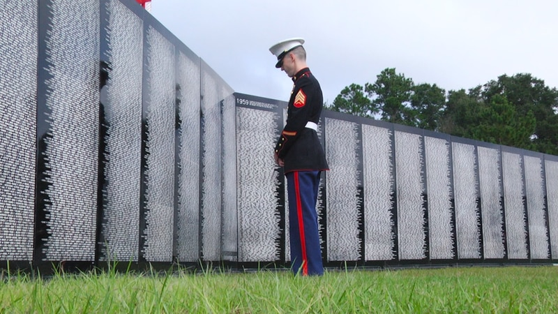 """I just got goosebumps"": Vietnam War Veterans reminisce at traveling memorial wall"