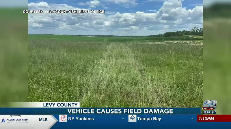 Levy County deputies are looking for a person who drove through a fence and peanut crop