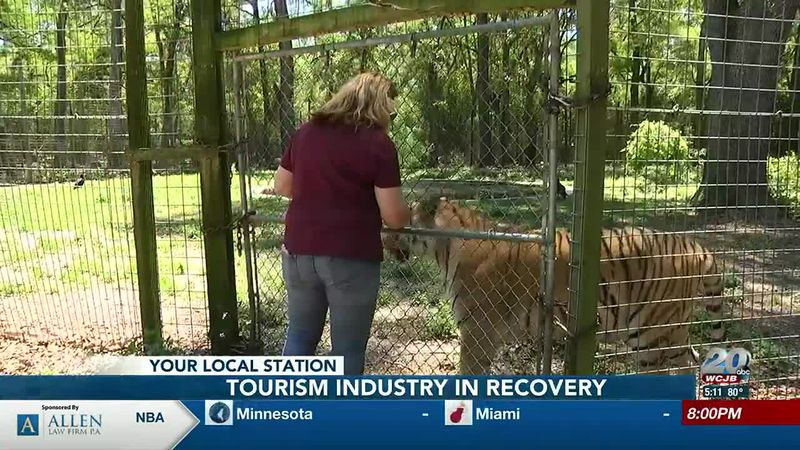 Tourism industry in recovery, animal sanctuary hoping for positive changes this summer