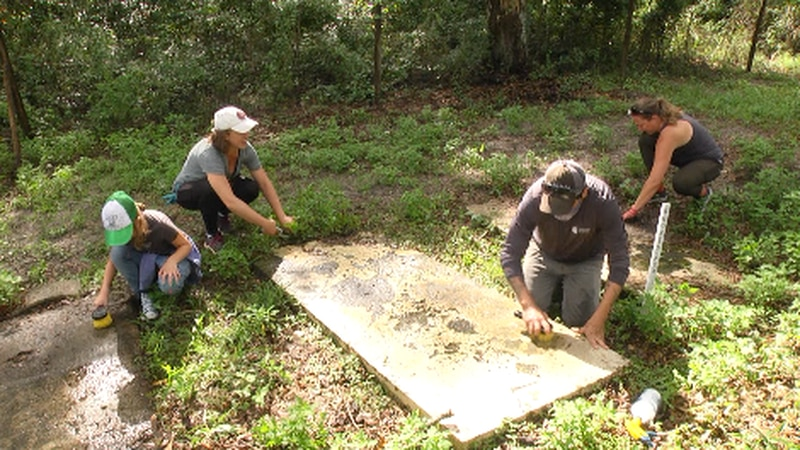 the cemetery located in Archer Florida has been mostly forgotten but is being restored to...