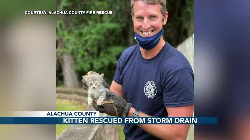 Alachua County Fire Rescue crews rescue a kitten stuck in a storm drain