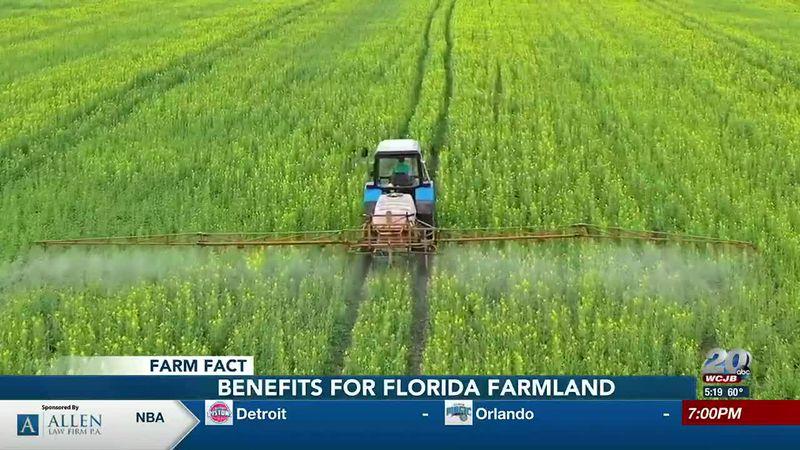 Farm Fact: Benefits for Farmland