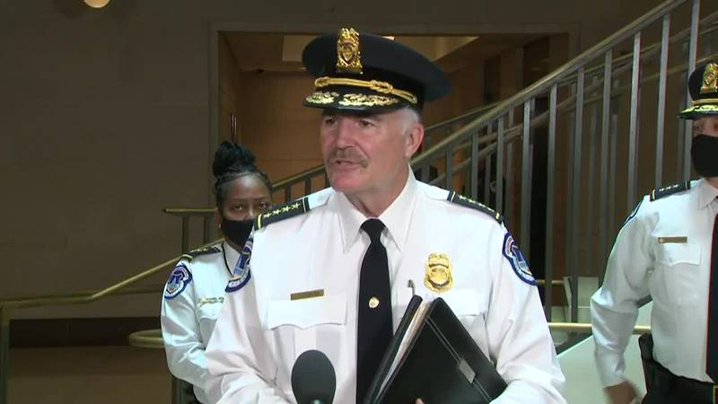 Capitol Police Chief Thomas Manger said the fencing is only temporary.
