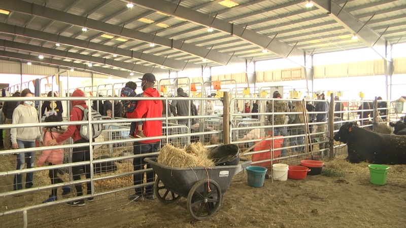 County officials cut ribbon on 37-acre Alachua County Fairgrounds in Newberry