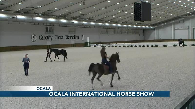 Inaugural Ocala International Horse Show debuts at World Equestrian Center
