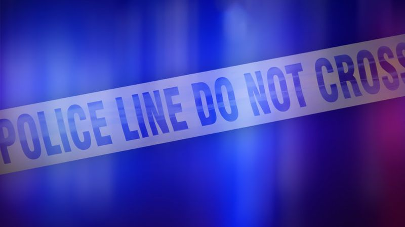 Gainesville police and fire rescue were on the scene after a pedestrian was hit overnight on...