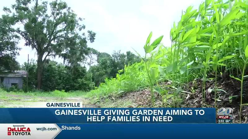 What's Growing On: Gainesville Giving Garden aims to help families struggling with food...