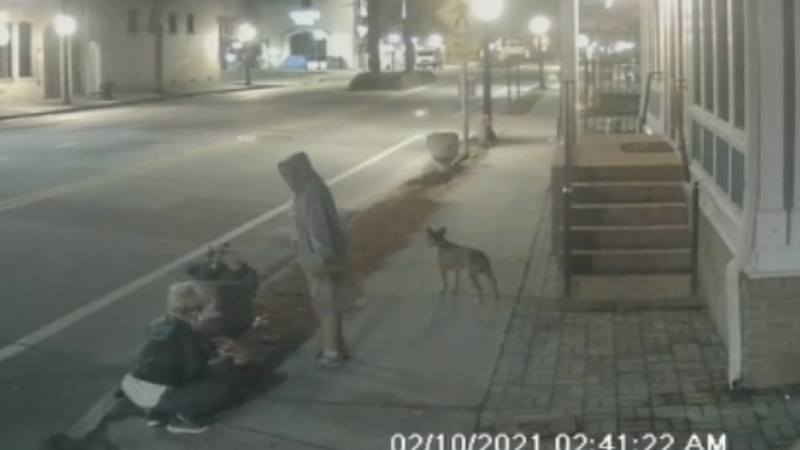 The women were caught on security cameras.