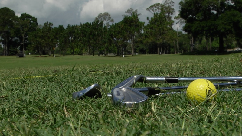 A range ball and iron clubs lay beside lay down on a driving range.
