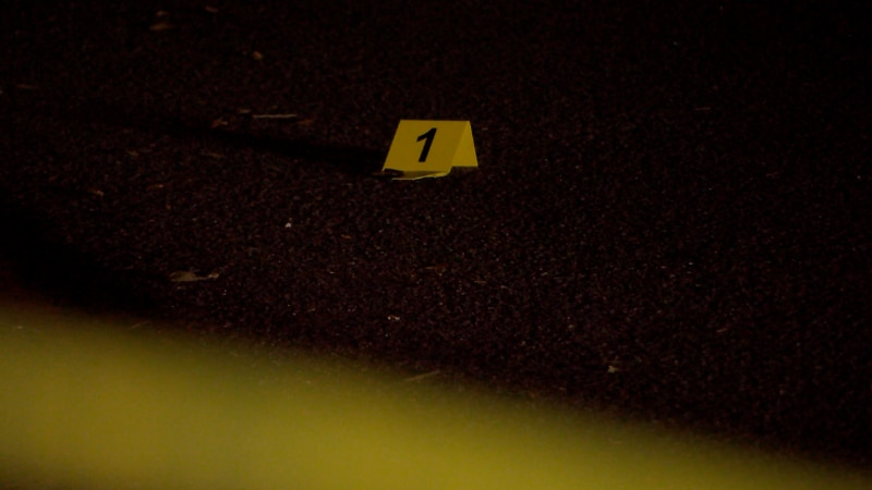 Officials with the Gainesville Police Department are investigating a drive-by shooting in the...