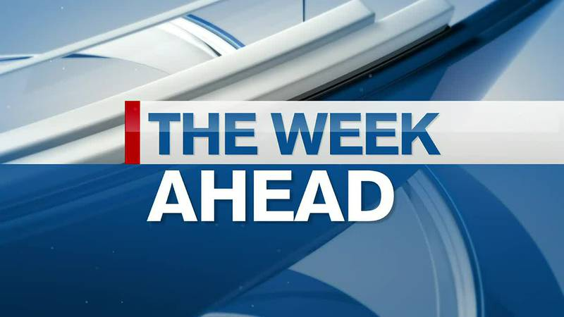 The Week Ahead: City Council of Lake City to fill vacant seat and Archer hosts 'Vision' town hall